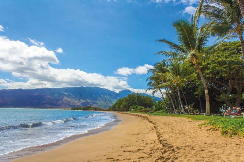 Hawaii ハワイ 環境変化