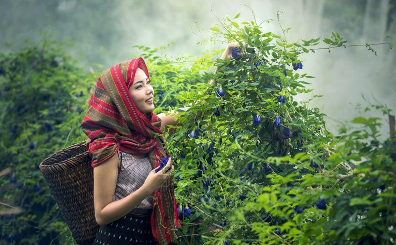 Farmer 農業女子